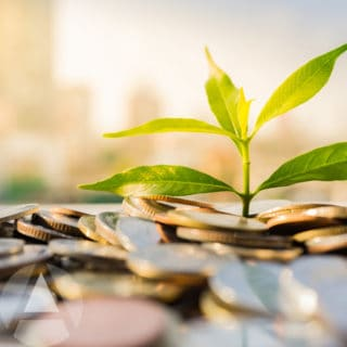 A money tree growing out of a pile of coins to illustrate building wealth by investing with limited funds in your IRA.